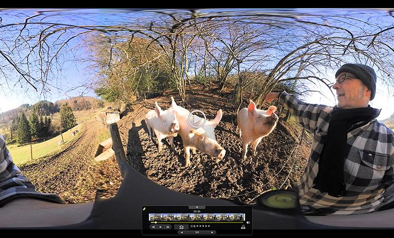 Kameratest II: in der freien Natur mit interessierten Beobachtern.